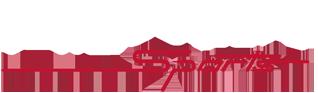 Pioneer Sports Logo